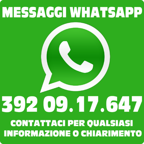 WIDGET WHATSAPP